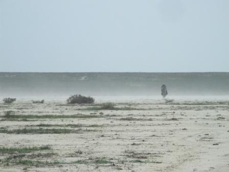 Пыльная буря на такыре