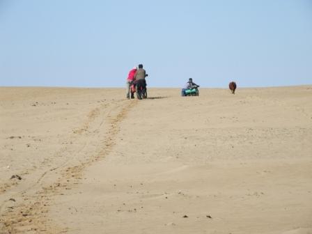 Пески Малые Барсуки